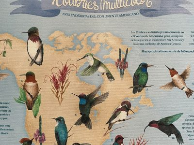 mapoteca_proyecto_portfolio