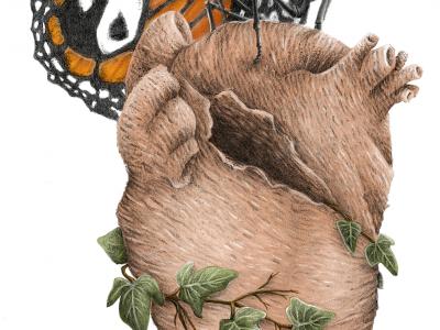 Proyecto_portfolio_ilustración_aplicada (1)