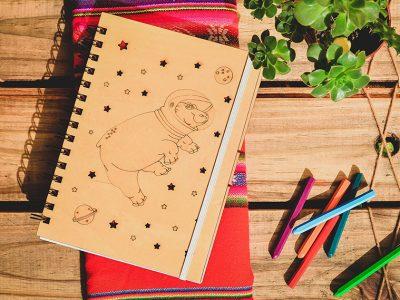 proyecto_ilustracion_portfolio_diseño_dual (10)