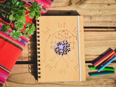 proyecto_ilustracion_portfolio_diseño_dual (12)