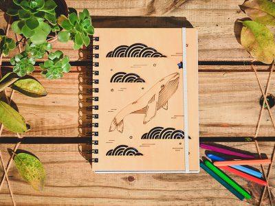 proyecto_ilustracion_portfolio_diseño_dual (14)
