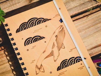 proyecto_ilustracion_portfolio_diseño_dual (15)