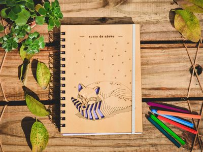 proyecto_ilustracion_portfolio_diseño_dual (16)